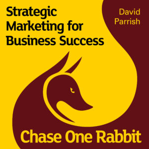 Chase One Rabbit. Marketing Audiobook cover