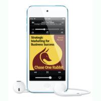 Chase One Rabbit audiobook