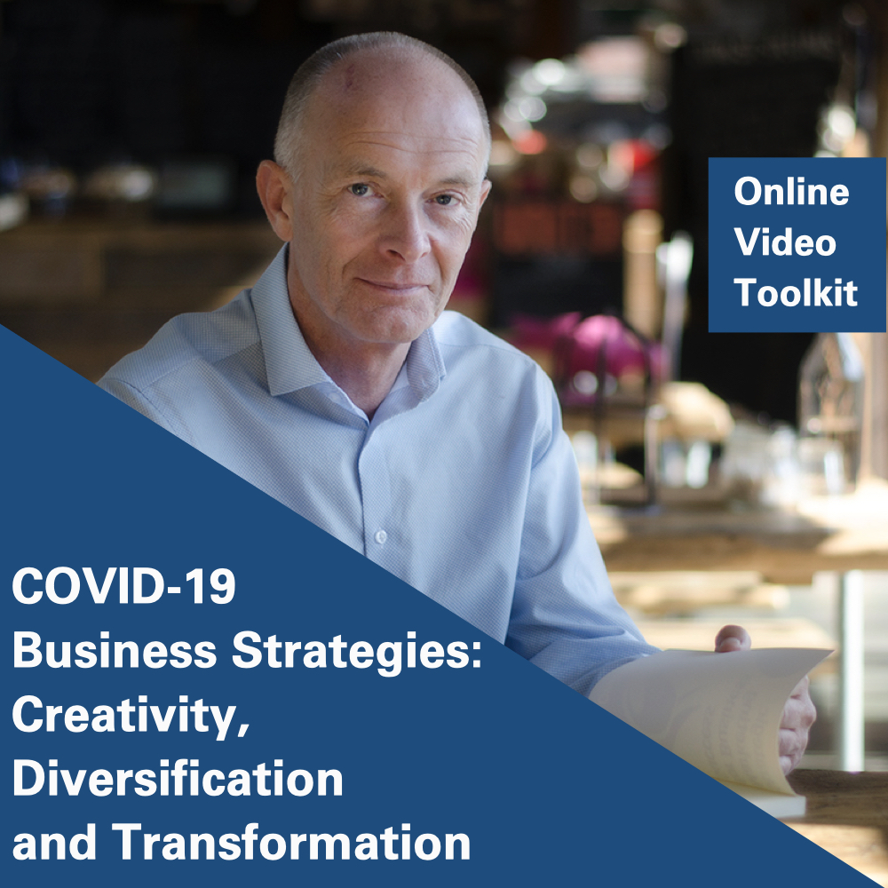 COVID-19 Business Strategies: Creativity, Diversification and Transformation